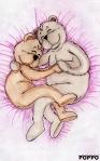 dessin ours & ourson003